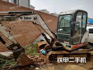 山猫Bobcat331