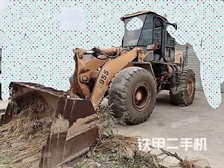 山東常林CL955裝載機實拍圖片