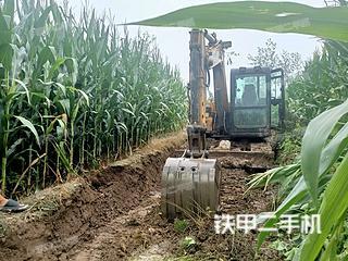 济宁三一重工SY75C挖掘机实拍图片
