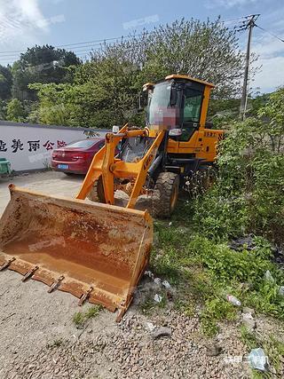 涼山山東魯工LG930裝載機實拍圖片