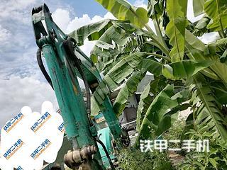 洋馬Vio40-2挖掘機實拍圖片