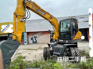 德州德州宝鼎BD80W-8挖掘机实拍图片